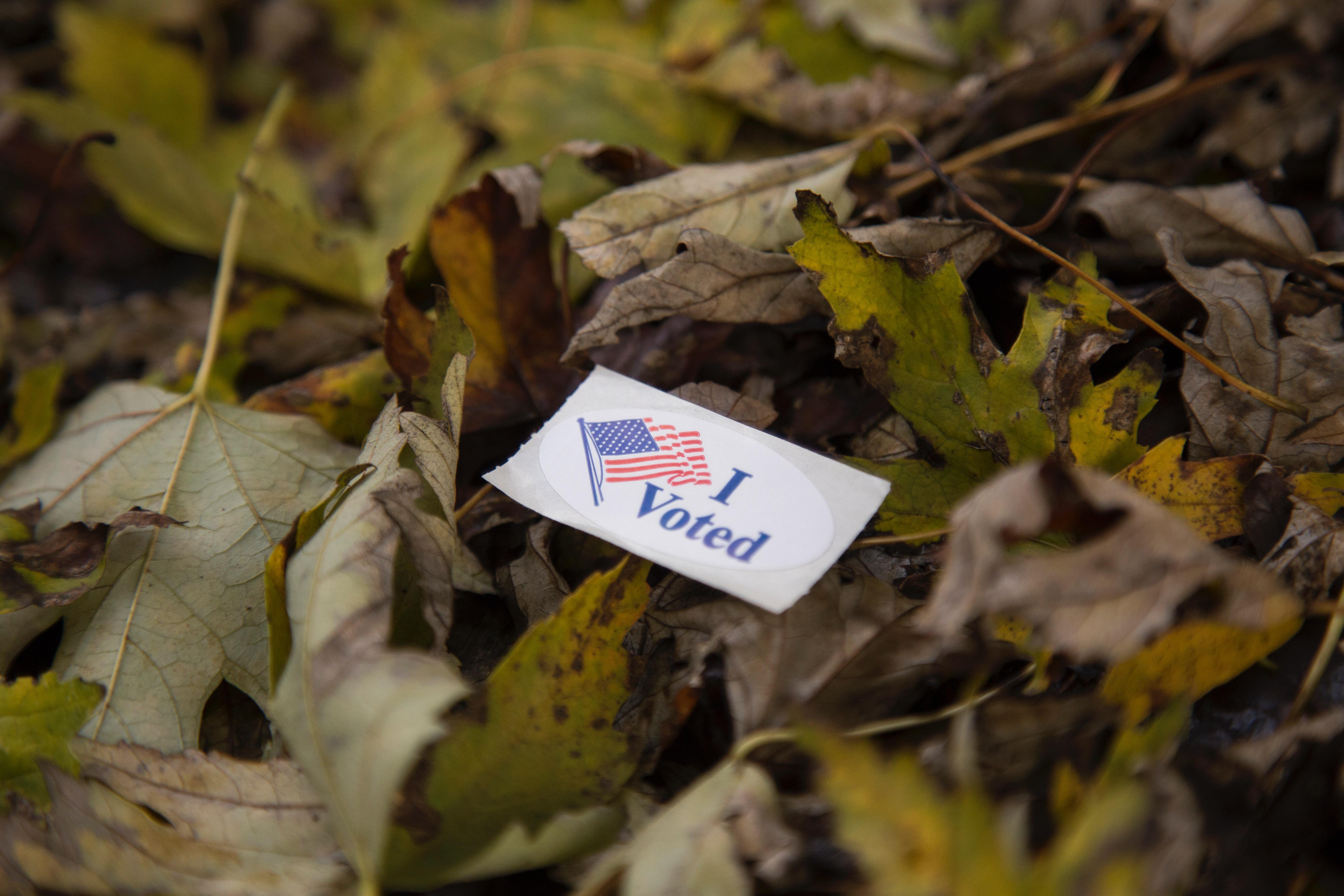 vote, election, encourage, empower
