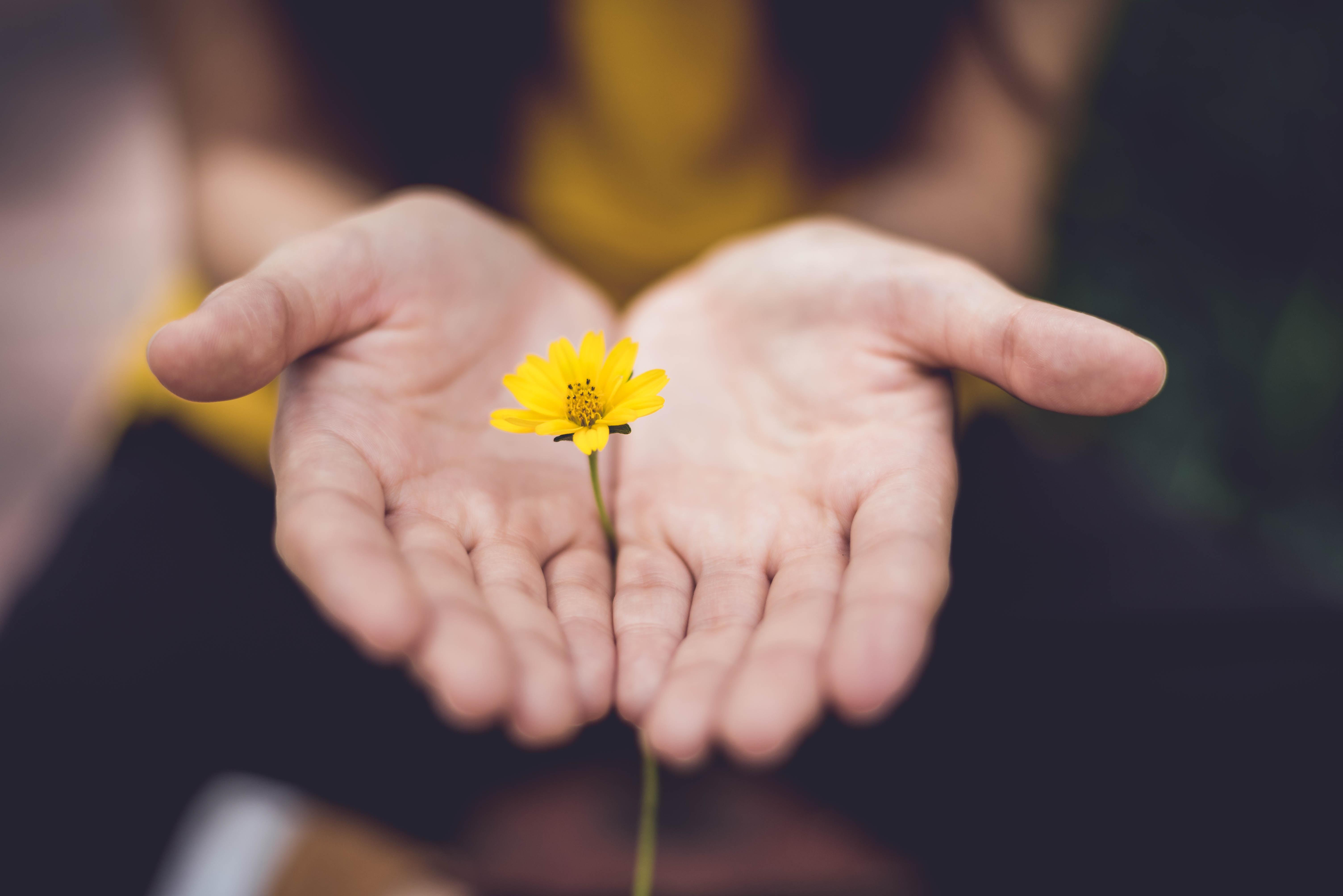 flower, woman, joy, peace, thank you